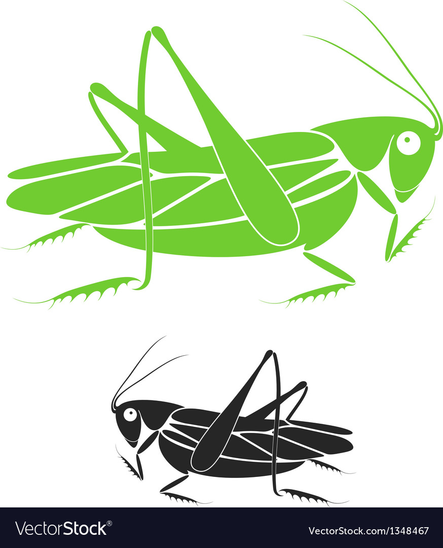 Locust vector | Price: 1 Credit (USD $1)