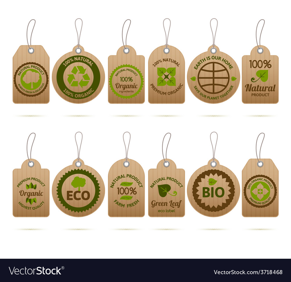 Ecology cardboard tags vector | Price: 1 Credit (USD $1)