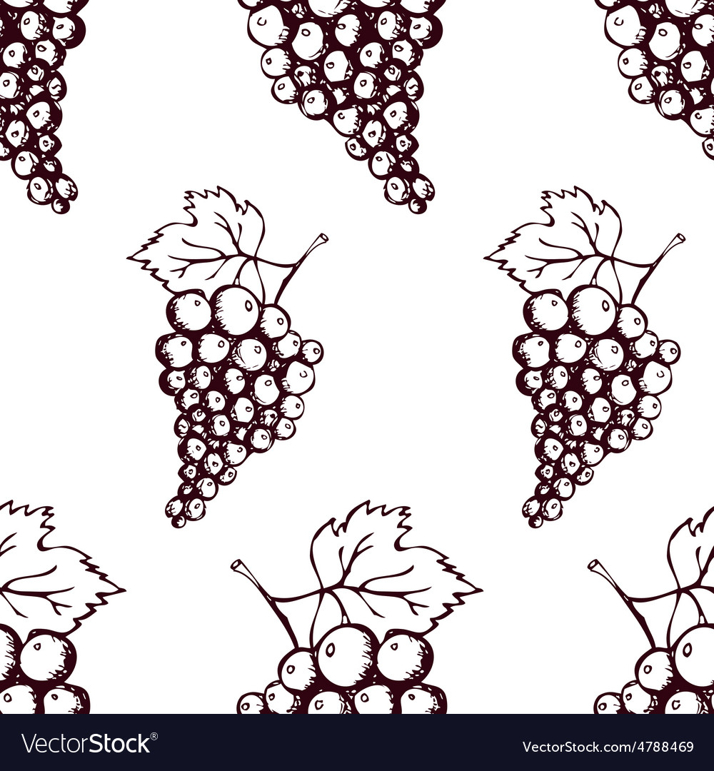 Seamless pattern with hand drawn decorative grapes vector | Price: 1 Credit (USD $1)