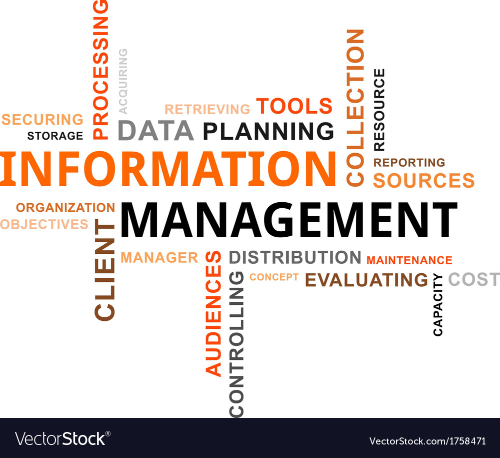Word cloud information management vector | Price: 1 Credit (USD $1)