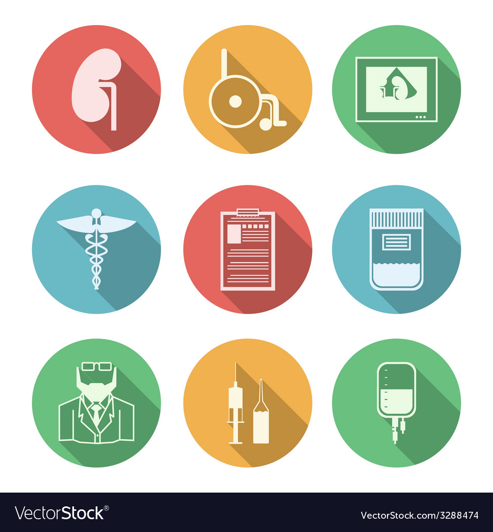 Colored icons for nephrology vector | Price: 1 Credit (USD $1)