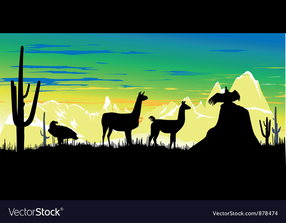 Llama wildlife background vector | Price: 1 Credit (USD $1)