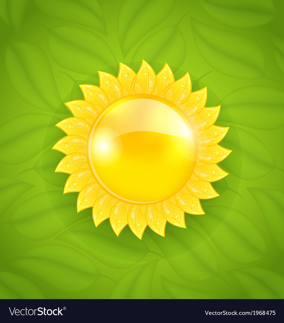 Abstract sun on green leaves texture eco friendly vector | Price: 1 Credit (USD $1)