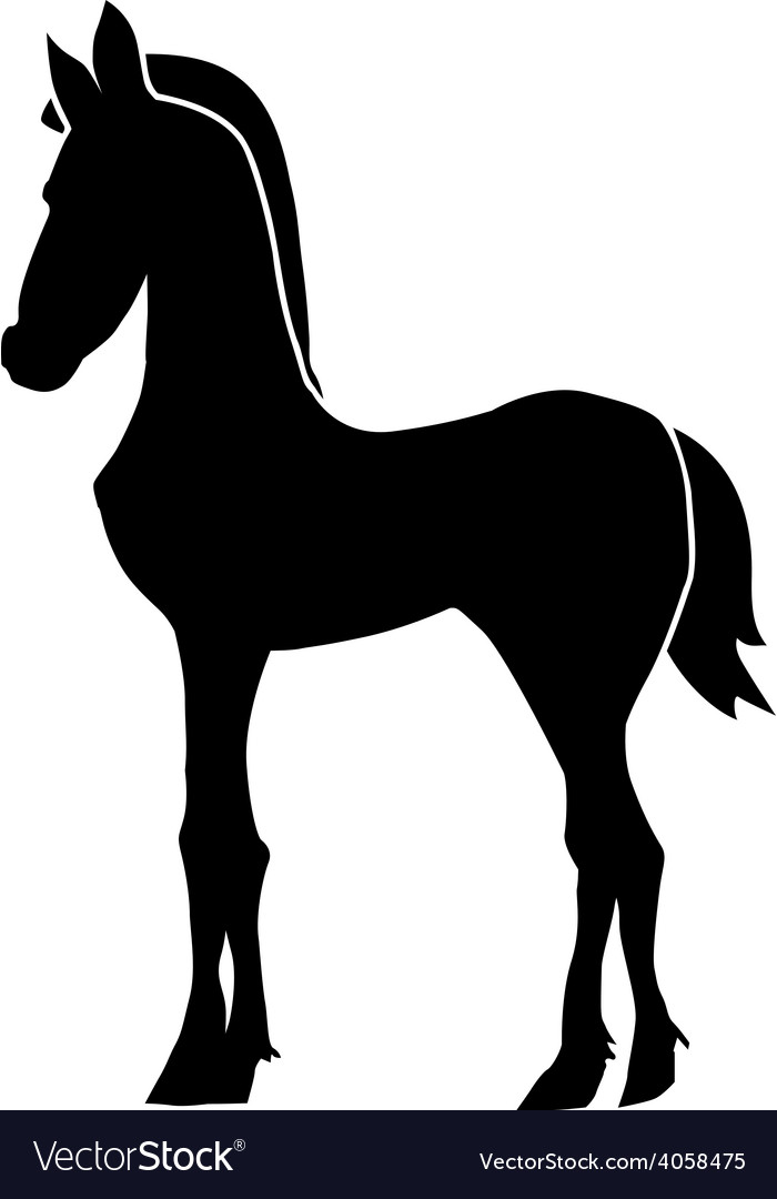 Foal vector | Price: 1 Credit (USD $1)