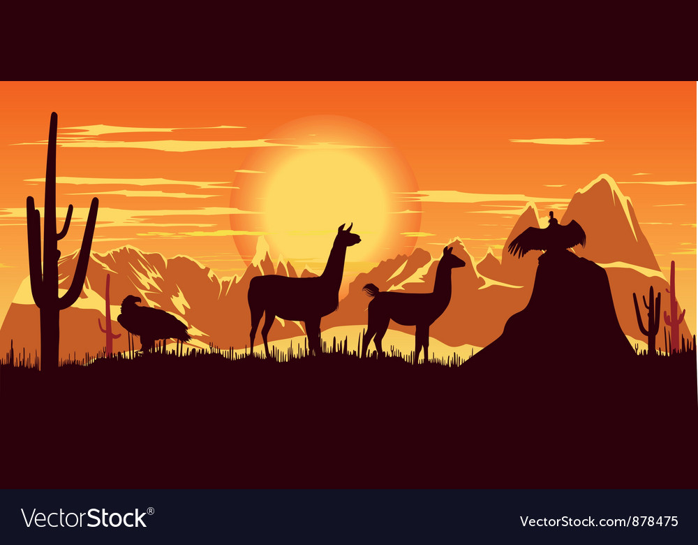 Llamas wildlife background vector | Price: 1 Credit (USD $1)