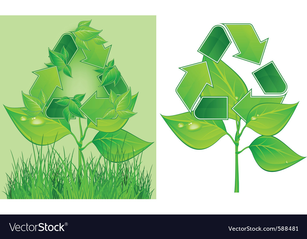 Green recycle symbol on plant on white background vector | Price: 1 Credit (USD $1)