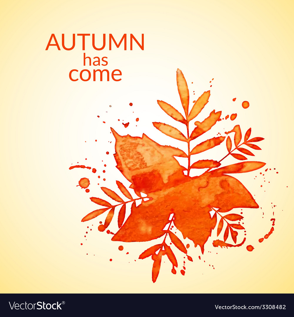 Autumn watercolor rowan leaves and spray vector | Price: 1 Credit (USD $1)
