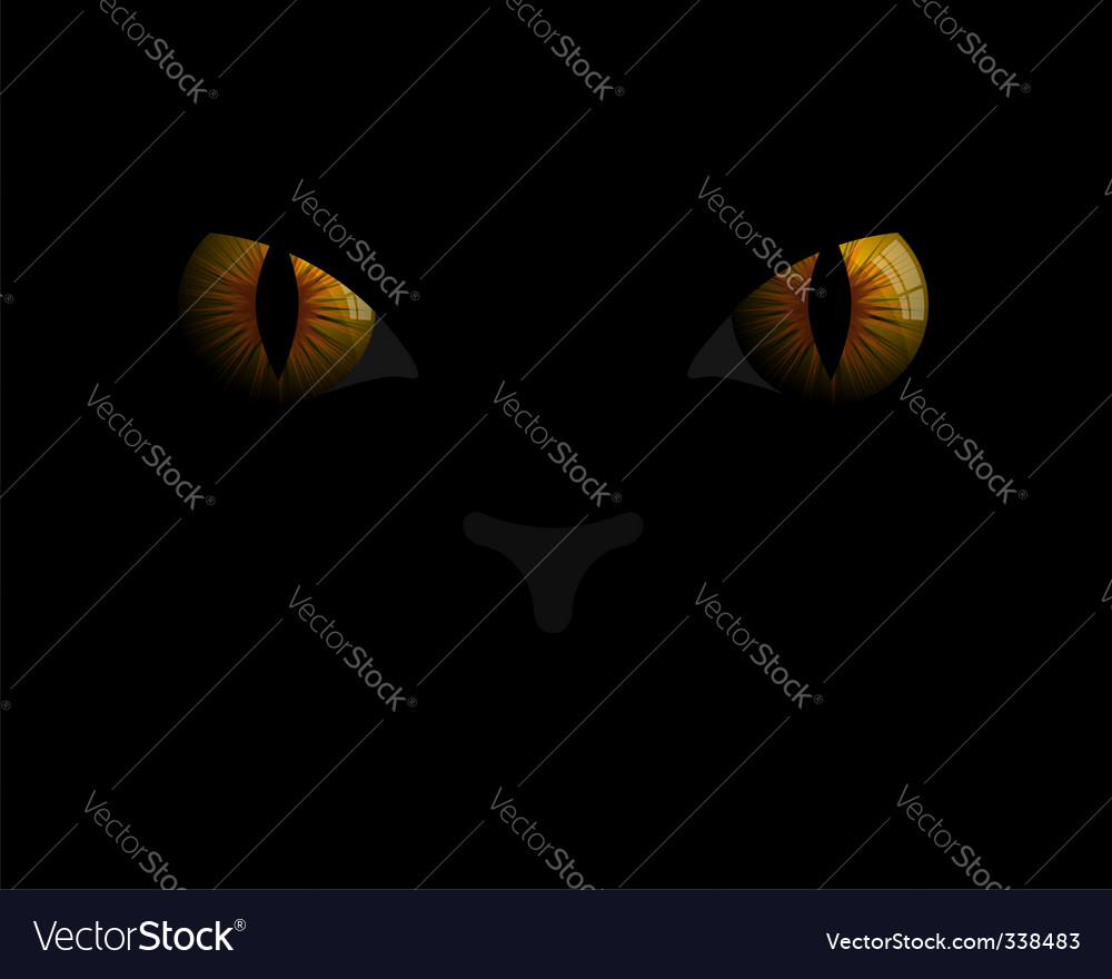 Cat's eyes vector | Price: 1 Credit (USD $1)