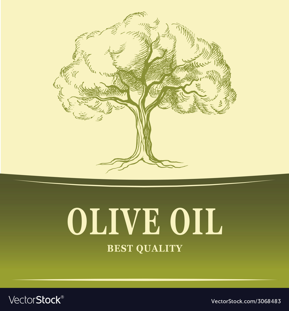 Olive oil olive tree for labels pack vector | Price: 1 Credit (USD $1)