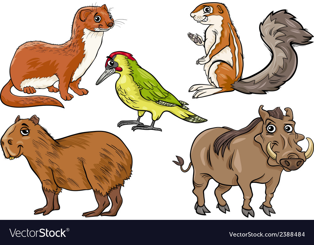 Wild animals set cartoon vector | Price: 1 Credit (USD $1)