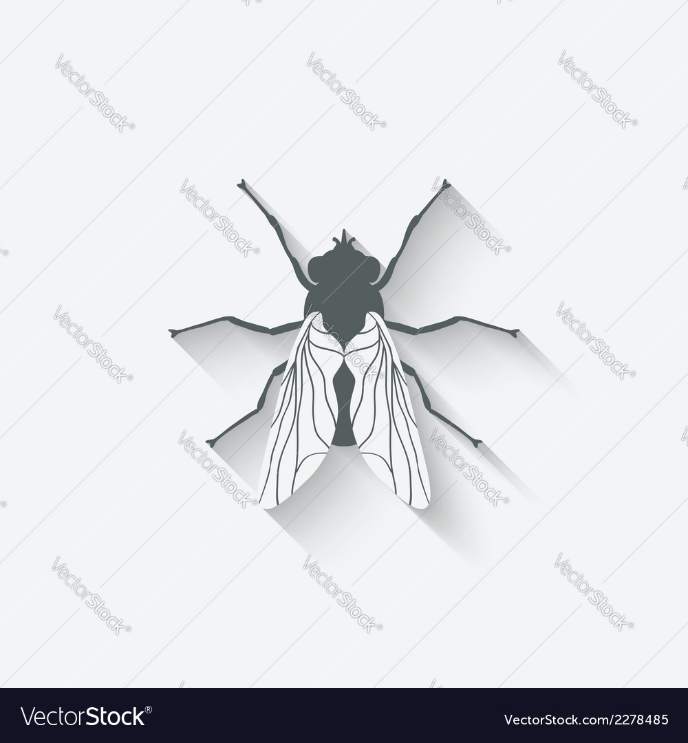 Fly insect icon vector | Price: 1 Credit (USD $1)