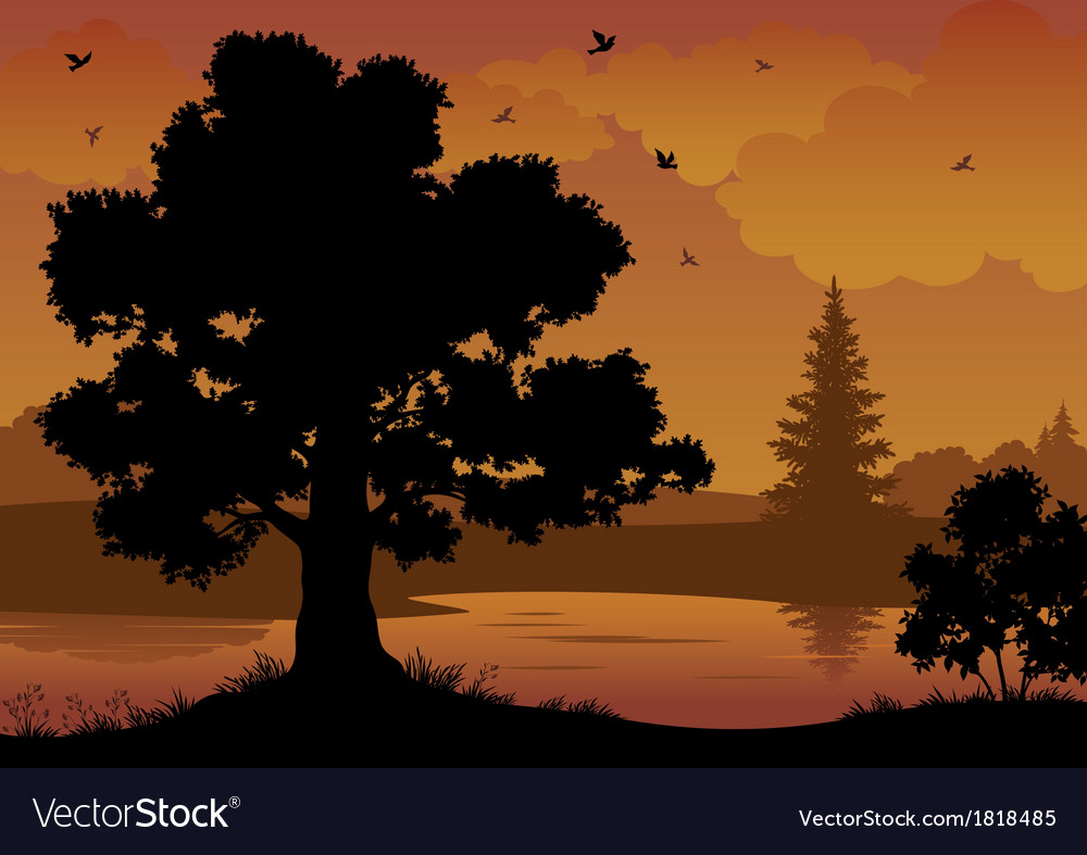 Landscape trees river and birds vector | Price: 1 Credit (USD $1)