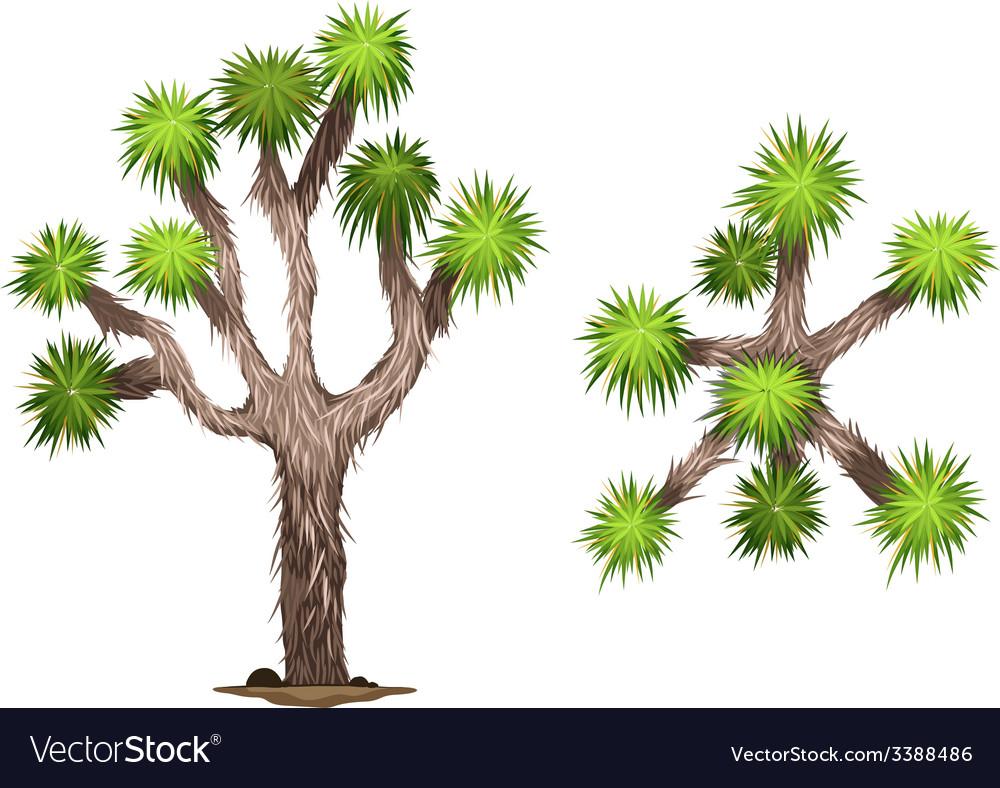 A yucca brevifolia vector | Price: 1 Credit (USD $1)