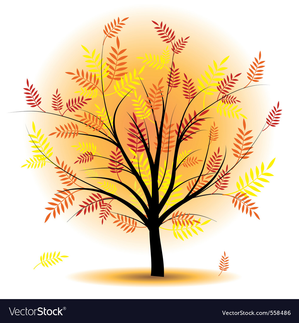 Beautiful autumn tree vector | Price: 1 Credit (USD $1)
