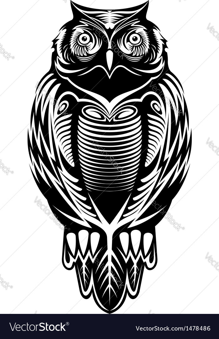 Majestic owl vector | Price: 1 Credit (USD $1)