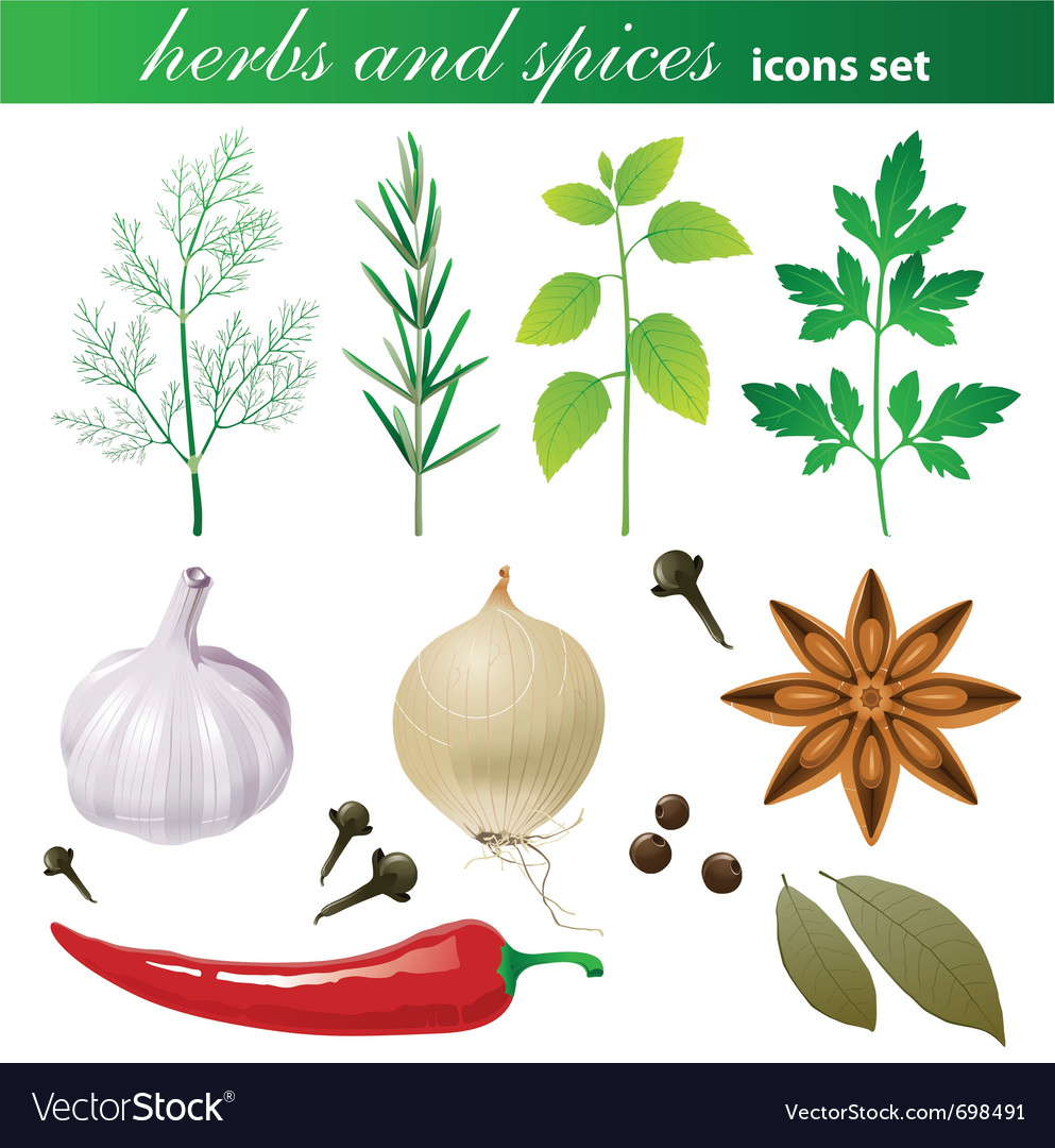 Highly detailed herbs and spices icons set vector | Price: 3 Credit (USD $3)