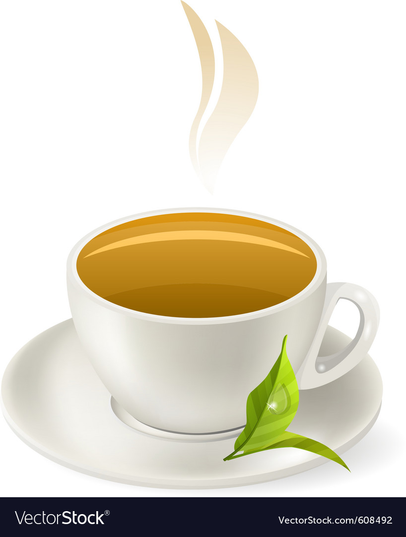 Cup of hot green tea vector | Price: 1 Credit (USD $1)