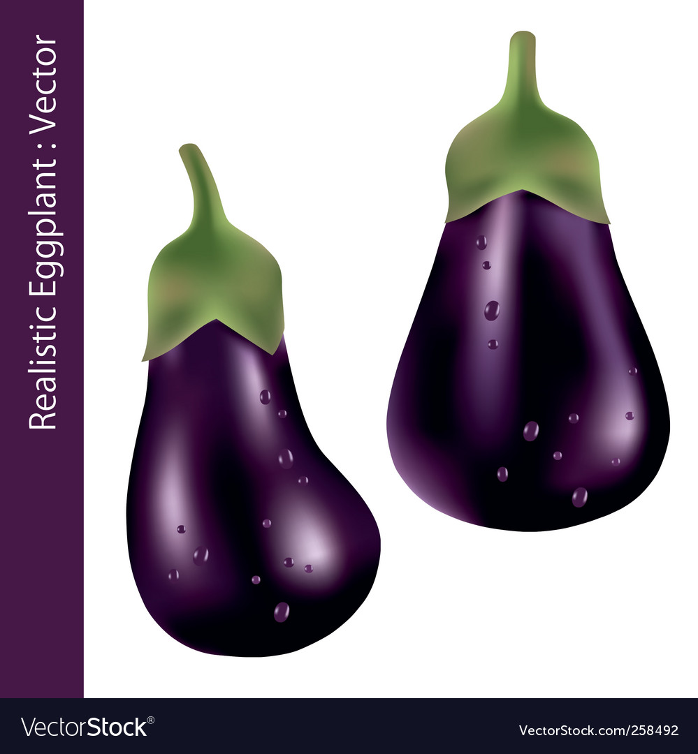 Realistic eggplant vector | Price: 1 Credit (USD $1)