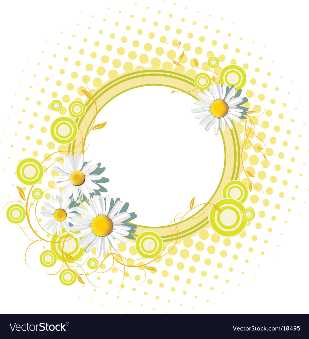 Floral banner with white chamomiles vector | Price: 1 Credit (USD $1)