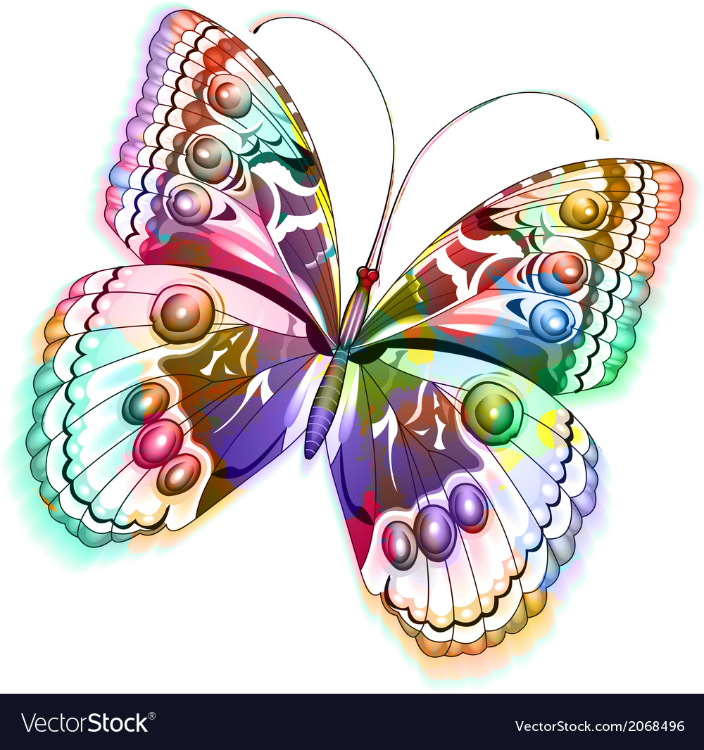 Isolated butterfly eps 10 vector | Price: 1 Credit (USD $1)