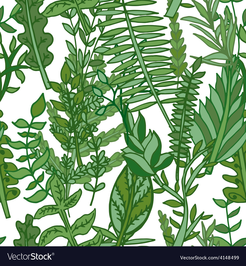 Herbal pattern hand drawn vector | Price: 1 Credit (USD $1)