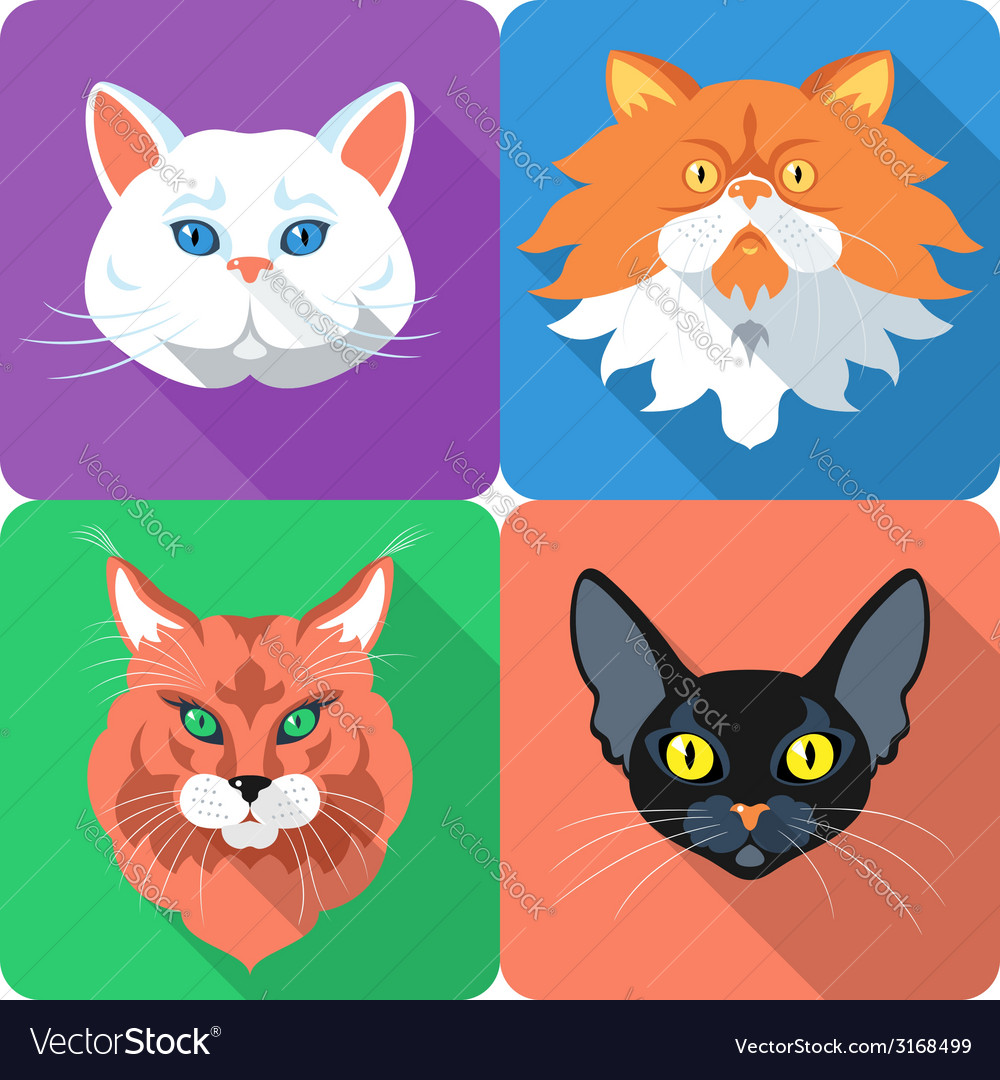Set icon cats flat design vector | Price: 1 Credit (USD $1)