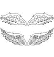 Wings pack vector
