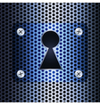 Keyhole on a metal grid vector