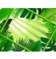 Beautiful forest background vector
