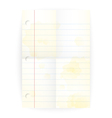 Old notepad ruled blank page with folds vector