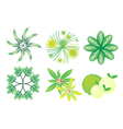 A set of isometric trees and plants vector