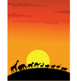 Wild animal silhouette vector