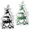 Snowy coniferous tree vector