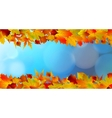 Red and yellow leaves against a bright blue sky vector