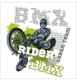Bmx rider - urban team design vector