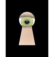 Eye peep at key hole vector