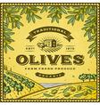 Vintage olives label vector