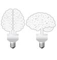 Human brain bulb vector