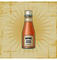 Retro ketchup bottle vector