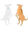 Two dogs standing on hind legs vector