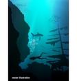 Beautiful and dangerous underwater world vector