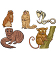 Wild animals set cartoon vector