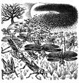 Locust invasion vector