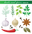 Highly detailed herbs and spices icons set vector