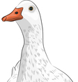 Duck a vector
