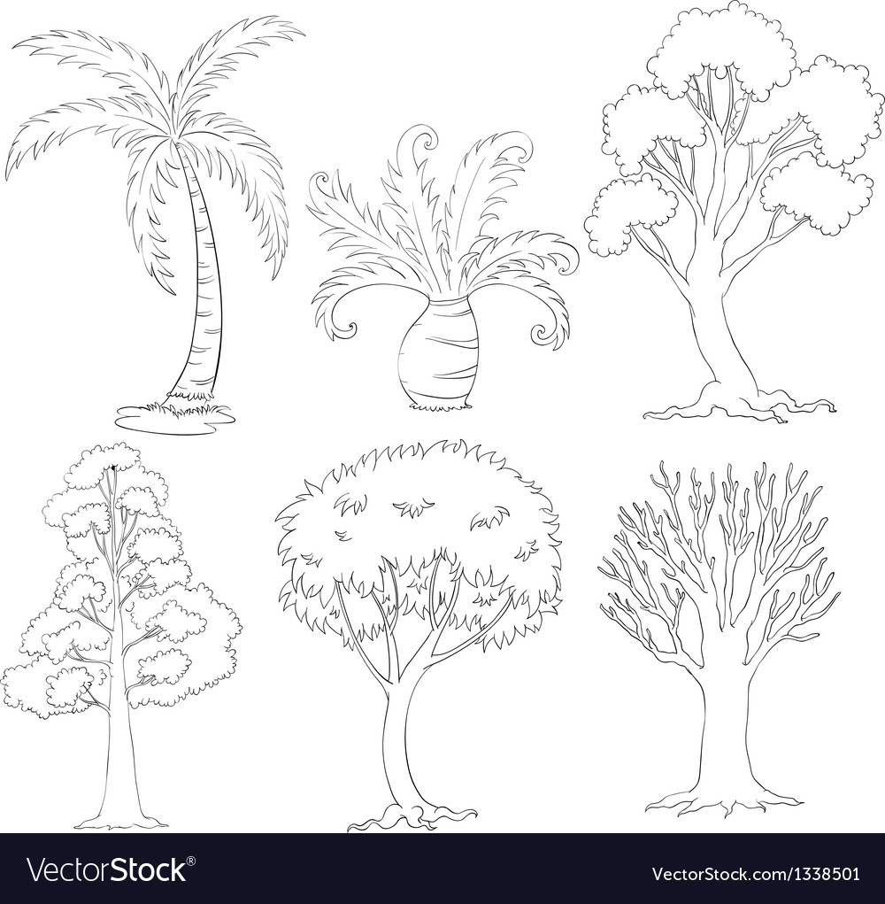 Silhouettes of trees vector | Price: 1 Credit (USD $1)