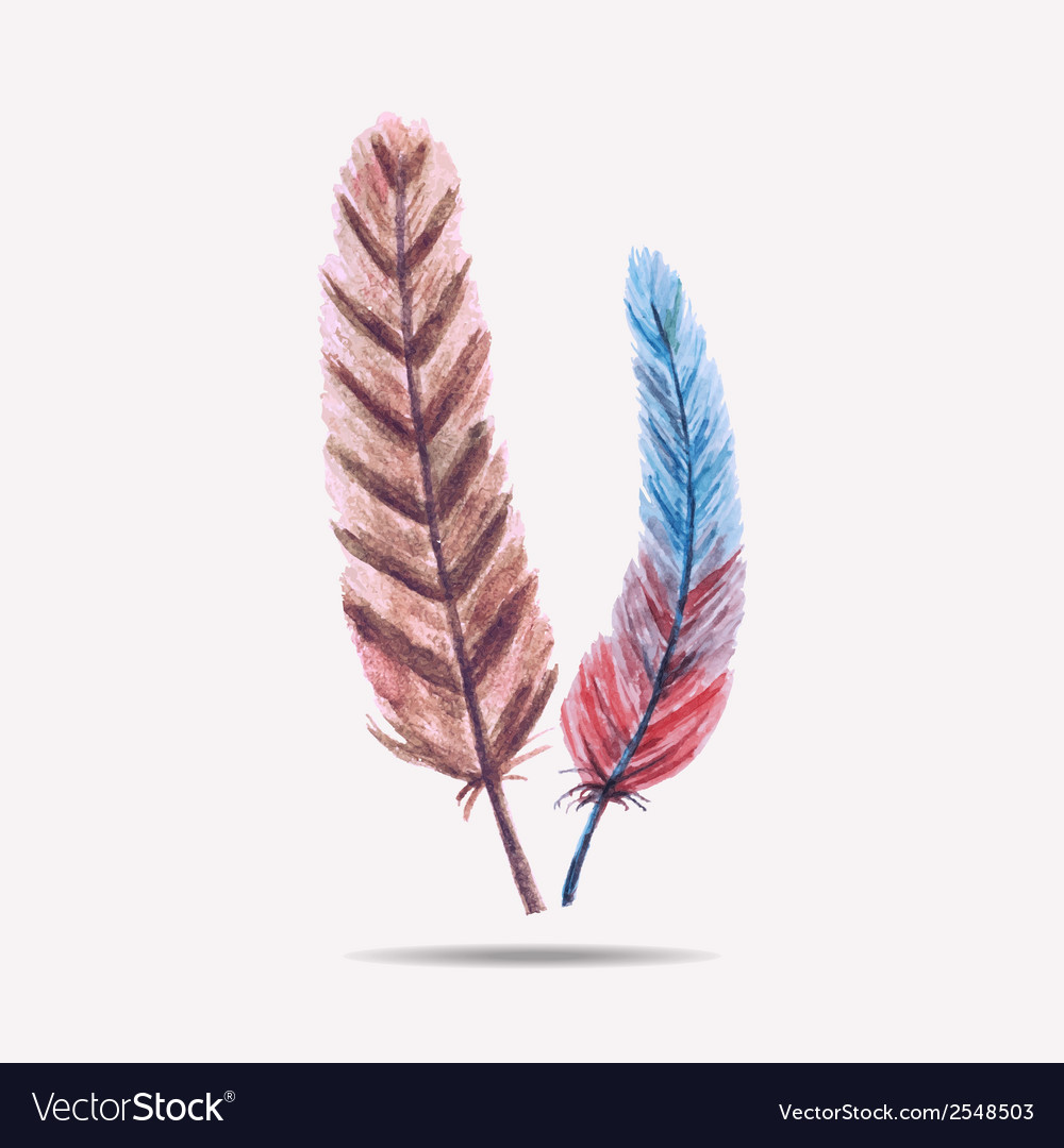 With watercolor feathers vector | Price: 1 Credit (USD $1)