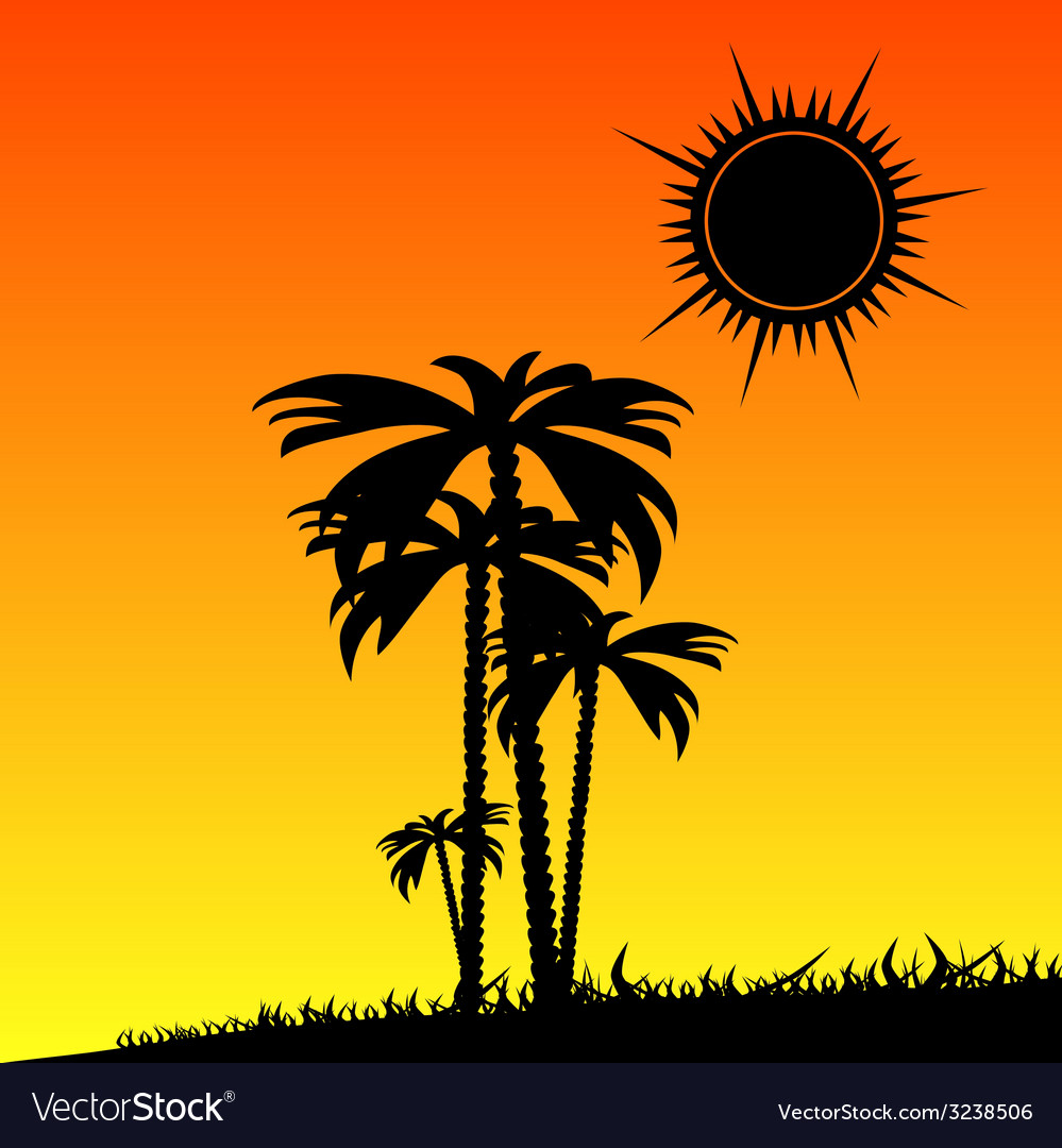 Palm in the nature color vector | Price: 1 Credit (USD $1)