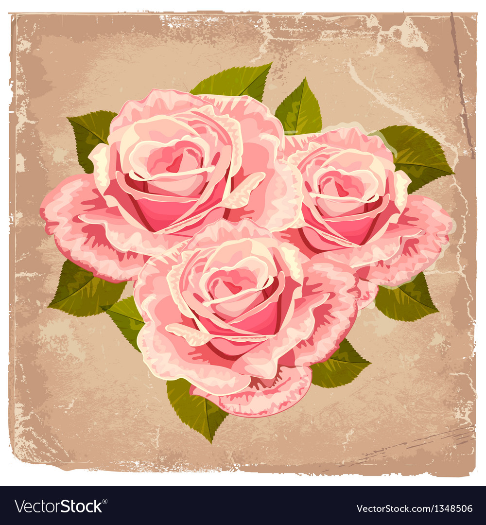Rose grunge vector | Price: 1 Credit (USD $1)