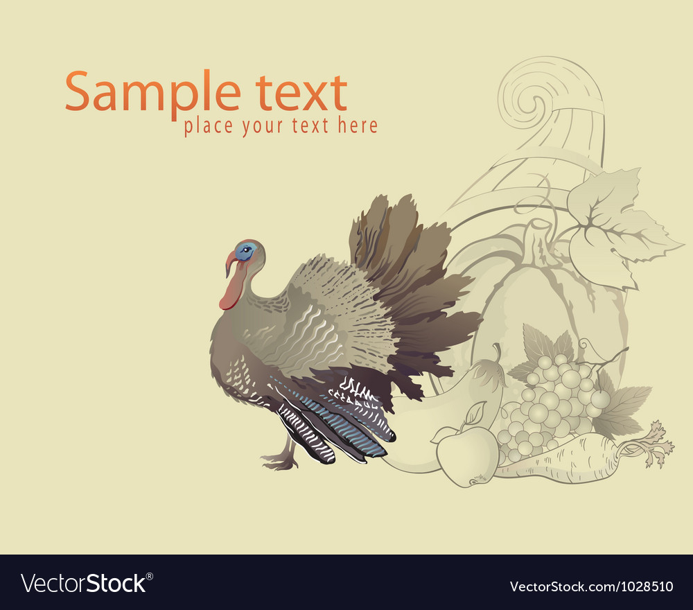 Thanksgiving turkey and cornucopia vector | Price: 1 Credit (USD $1)